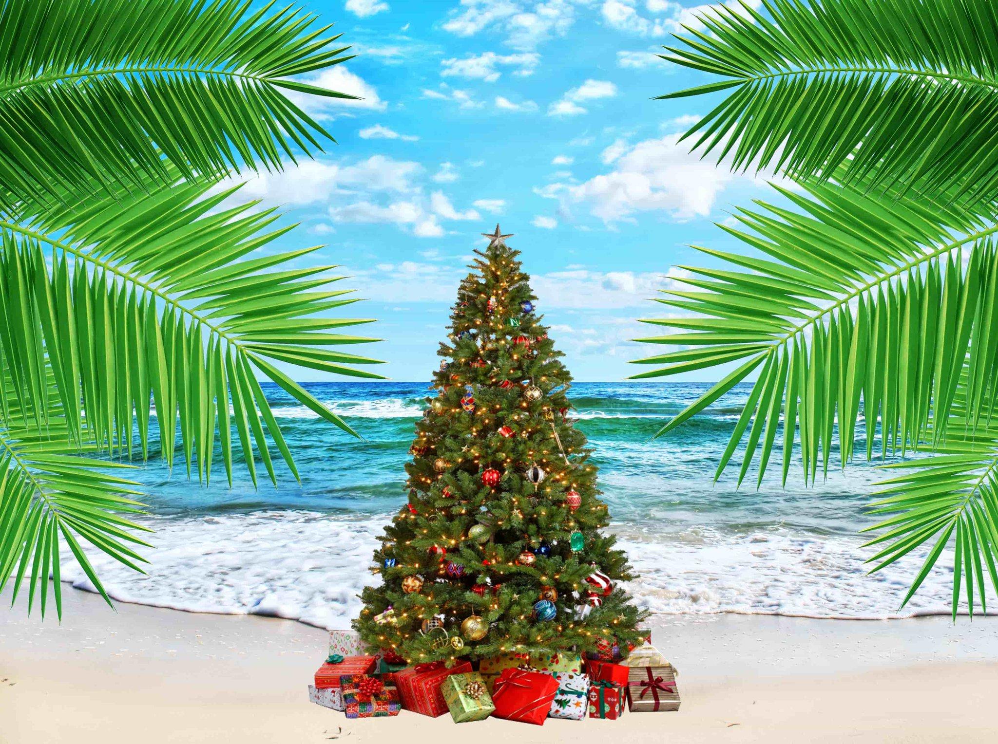 Елка и пальмы на пляже