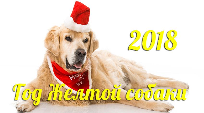 Картинки с поздравлением нового года 2018 собаки