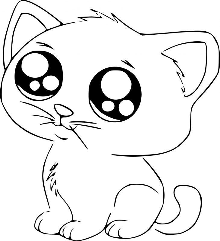 cute-cat-730x800 Рисунки карандашом для срисовки очень легкие и красивые