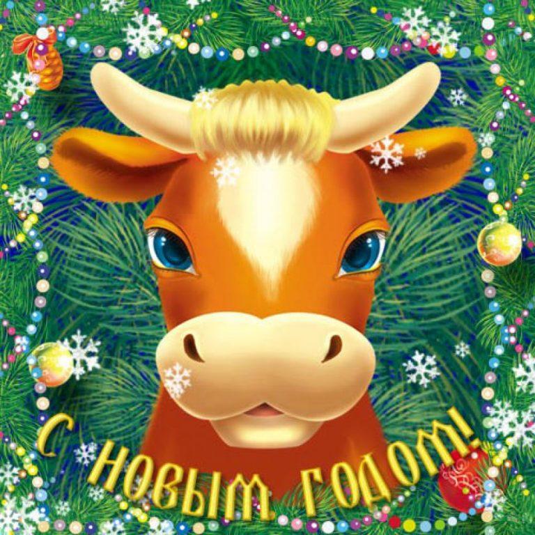 открытка с быком