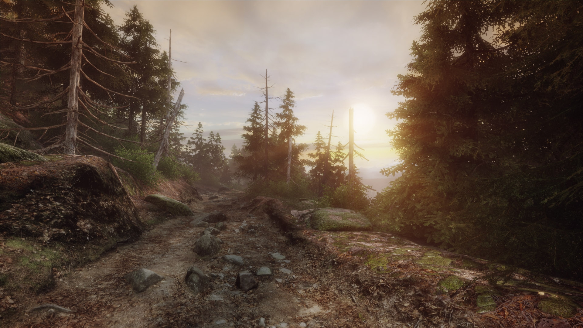 Игра The Vanishing of Ethan Carter