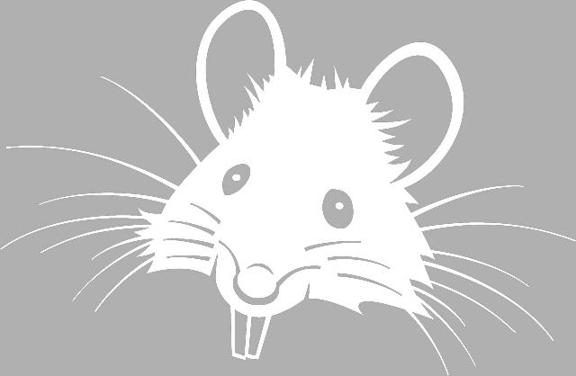 Трафарет крыса