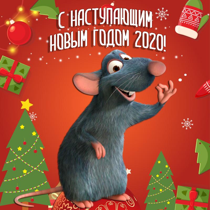 более, мне открытка крыса поздравляет эту задачку