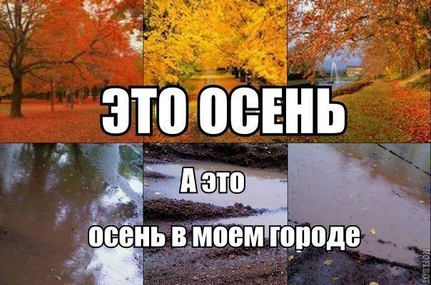 8e55671f Прикольные и смешные картинки про осень (24 фото)