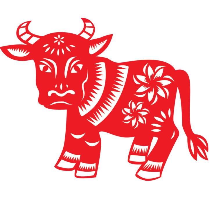 Трафарет быка